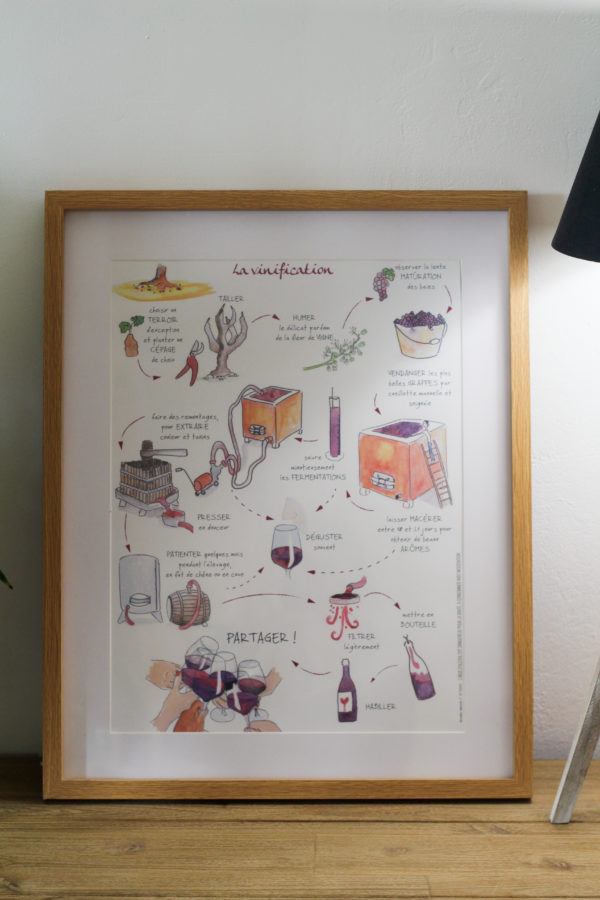Poster vinification beaujolaise